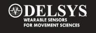 Delsys Logo